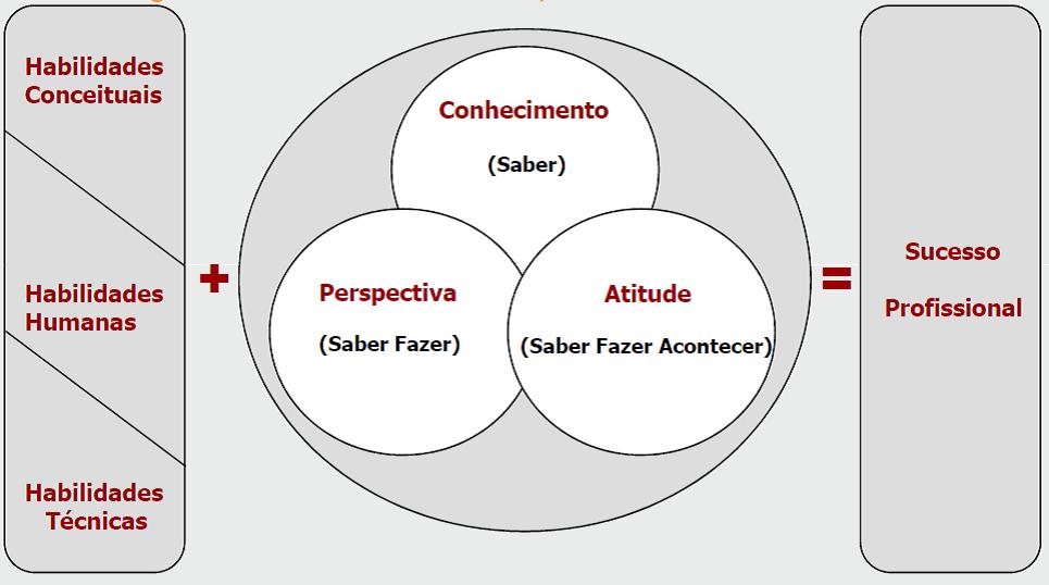 habilidades e competências do administrador