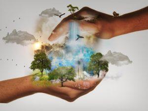 administração e sustentabilidade